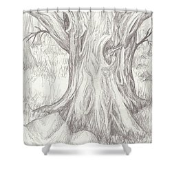Big Tree Shower Curtain by Ruth Renshaw