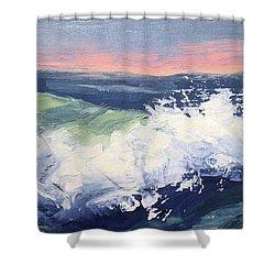 Big Wave #1 Shower Curtain by Mary Byrom