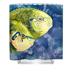 Bignose Unicornfish Shower Curtain by Tanya L Haynes - Printscapes