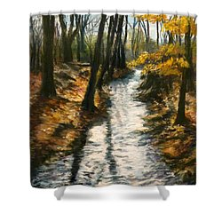 Shower Curtain featuring the pastel Bike Path Brook by Jack Skinner