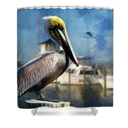 Biloxi Harbor Pelican Shower Curtain