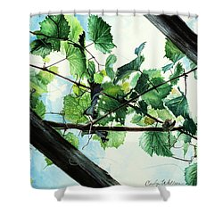 Biltmore Grapevines Overhead Shower Curtain