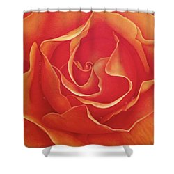 Biltmore Rose Shower Curtain