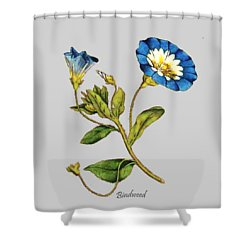 Bindweed Shower Curtain by Asok Mukhopadhyay