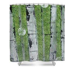 Birch - Green 1 Shower Curtain by Jacqueline Athmann