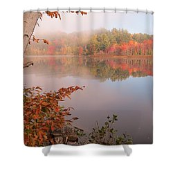 Birch And Beyond Shower Curtain by MTBobbins Photography