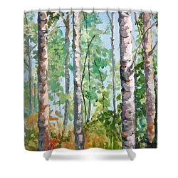 Birch Shower Curtain