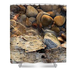 Birch Bark And Ice In The Creek Four  Shower Curtain