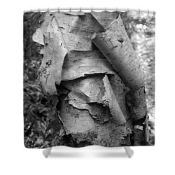 Birch Bark Shower Curtain