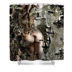 Birch Beauty Shower Curtain