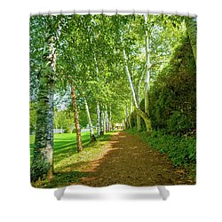 Shower Curtain featuring the photograph Birch Gauntlet by Greg Fortier