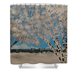 Birch Snow Shower Curtain