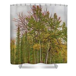 Birch Tree #1 Shower Curtain
