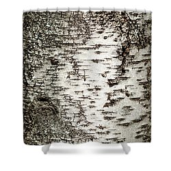 Shower Curtain featuring the photograph Birch Tree Bark by Christina Rollo