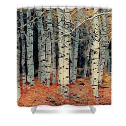 Birch Tree Forest 1 Shower Curtain