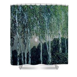 Birch Trees Shower Curtain by Aleksandr Jakovlevic Golovin