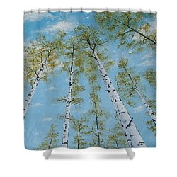 Birch Trees And Sky Shower Curtain