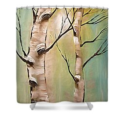 Birch Trees Color Pencil  Shower Curtain by Heinz G Mielke