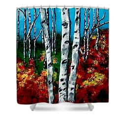 Shower Curtain featuring the painting Birch Woods 2 by Sonya Nancy Capling-Bacle