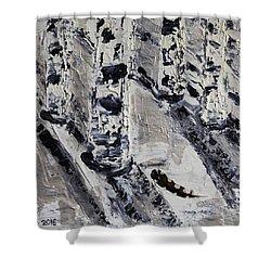 Birches And Snowy Shadows Shower Curtain by Valerie Ornstein