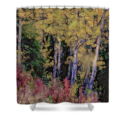 Birches At The Perch #1 Shower Curtain