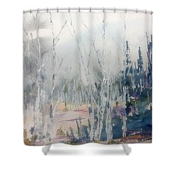 Birches In Haze  Naim's Enchatned Forest Shower Curtain