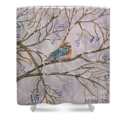 Bird And Branches Shower Curtain by Elizabeth Coats