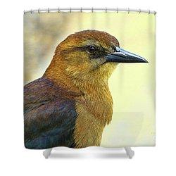 Shower Curtain featuring the photograph Bird Beauty by Deborah Benoit