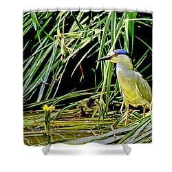 Shower Curtain featuring the photograph Bird Blind by Joseph Hollingsworth