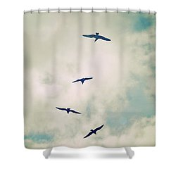 Shower Curtain featuring the photograph Bird Dance by Lyn Randle