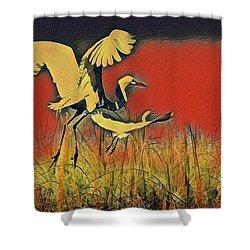 Bird Dreams Shower Curtain