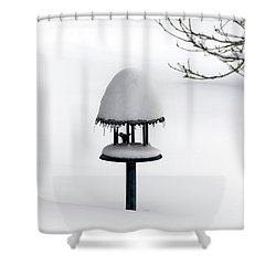Bird Feeder In Snow Shower Curtain
