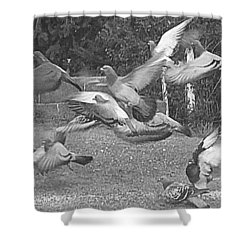Bird Flurry Shower Curtain