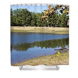 Bird House Lake Shower Curtain