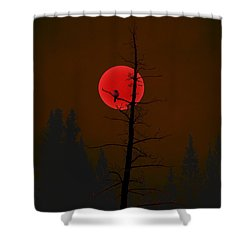 Shower Curtain featuring the digital art Bird In A Tree by Stuart Turnbull