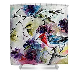 Bird In Elderberry Bush Watercolor Shower Curtain by Ginette Callaway