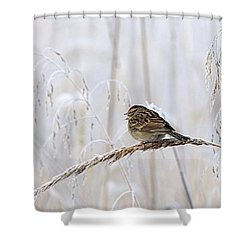 Bird In First Frost Shower Curtain