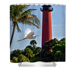 Bird In Flight Under Jupiter Lighthouse, Florida Shower Curtain