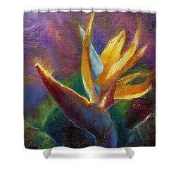 Shower Curtain featuring the painting Bird Of Paradise - Tropical Hawaiian Flowers by Karen Whitworth