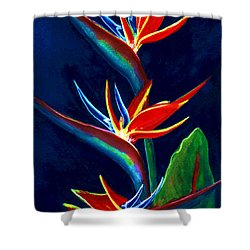 Bird Of Paradise #161 Shower Curtain by Donald k Hall