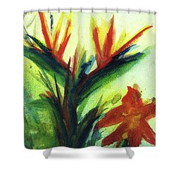 Bird Of Paradise, #177 Shower Curtain by Donald k Hall