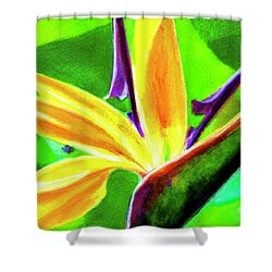 Bird Of Paradise #262 Shower Curtain by Donald k Hall