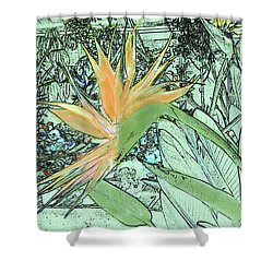 Shower Curtain featuring the photograph Bird Of Paradise In The Hothouse by Nareeta Martin