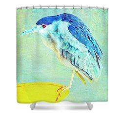 Bird On A Chair Shower Curtain