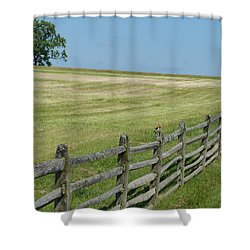 Bird On A Fence Shower Curtain by Donald C Morgan