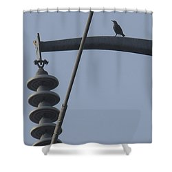 Bird On A High Wire Shower Curtain