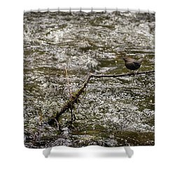 Bird On A River Shower Curtain