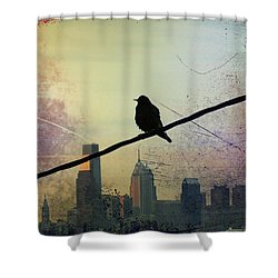 Bird On A Wire Shower Curtain by Bill Cannon