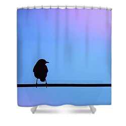 Bird On A Wire Silhouette Shower Curtain