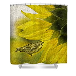 Shower Curtain featuring the photograph Bird On Sunflower by Betty Denise